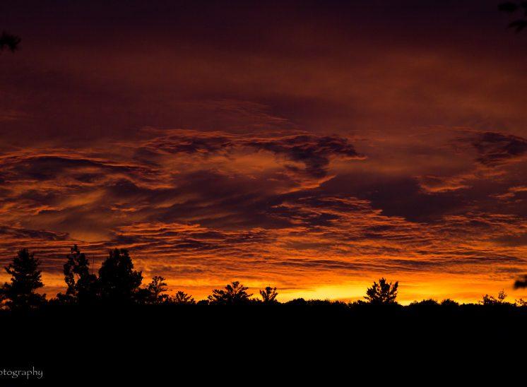 Sinister Sunset